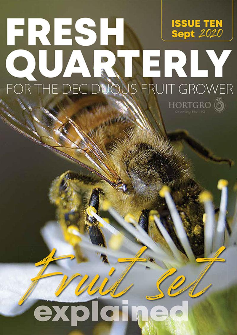 Fresh Quarterly Issue 10