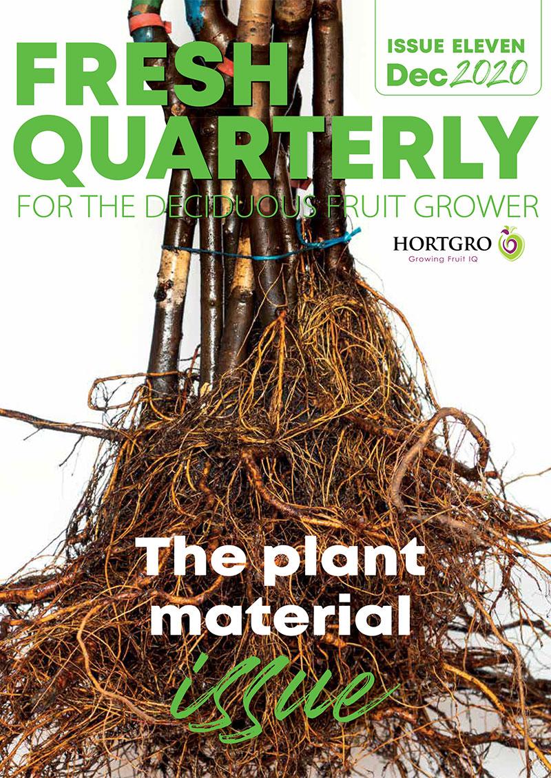Fresh Quarterly Issue 11
