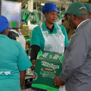 Gallery Hortgro Daff Minister Visit Featured