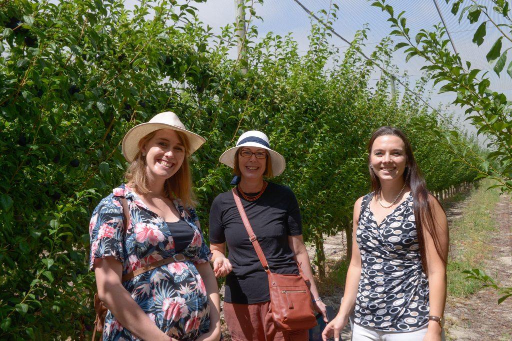 Gallery Hortgro Food Journalists Press Trip