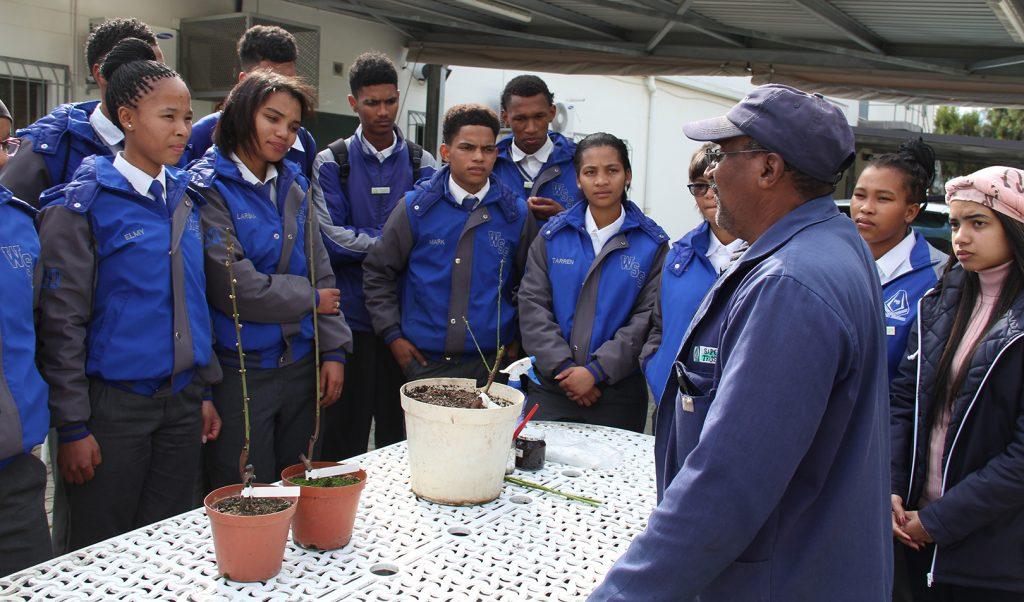 Gallery Hortgro Industry Tours School Group Talk Pot Plants