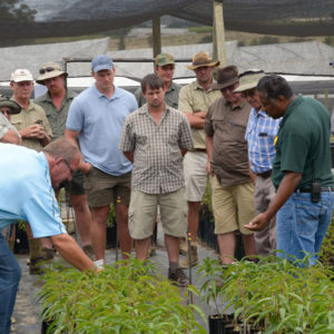 Gallery Hortgro Northern Province Stone Fruit Producers Visit Featured