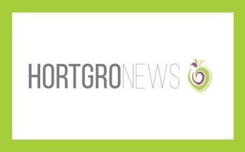 Hortgro Block Newsroom Hortgro News