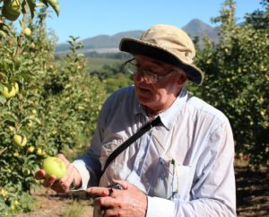 Ken Pringle Monitoring Pests In The Orchards